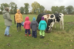 Tiere zum Kennenlernen, Füttern und Anfassen